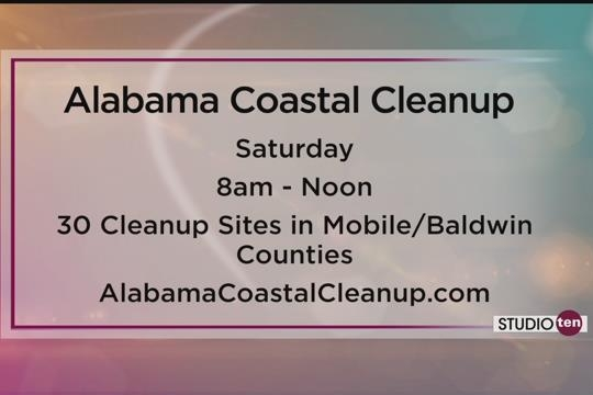 Coastal Cleanup Calls for Volunteers on Studio 10